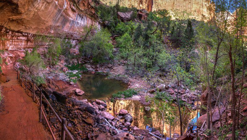 Zion – Wanderung zu den Emerald Pools